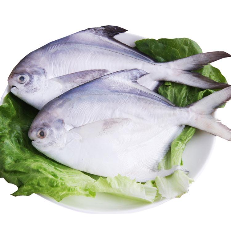 海天下 深海大鲳鱼(200/300g)500g