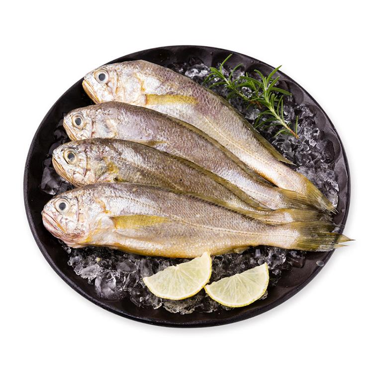 舟山野生小黄鱼(7-8条/斤 )500g/袋