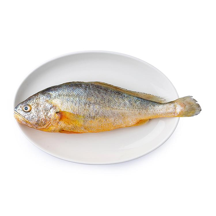 东海大黄鱼(1条装500g+/条) 500g/袋