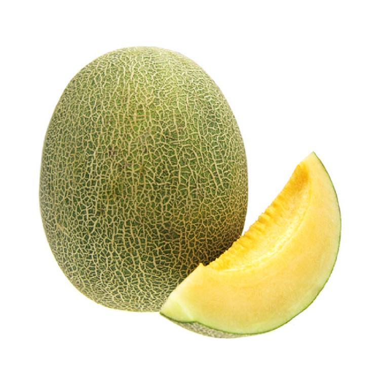 新疆特级蜜瓜1粒装 单果约1.2kg