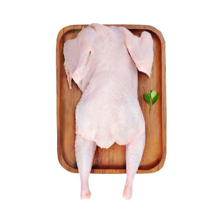 老汉农庄 二年农家散养老母鸡 1000g
