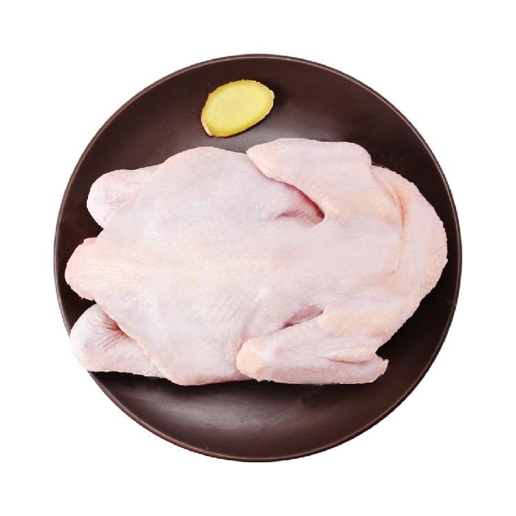 老汉农庄 散养童子鸡 650g