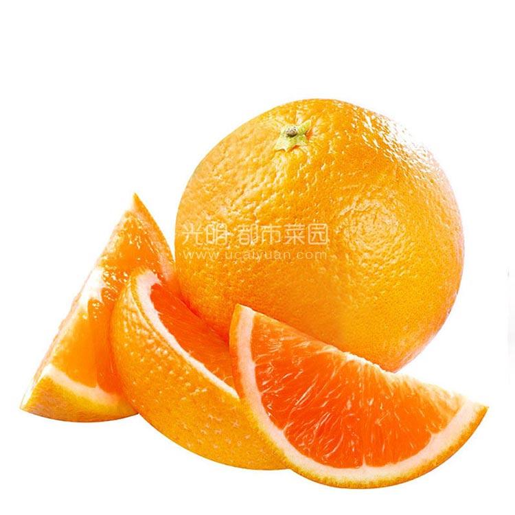 新奇士血橙6只装 约1.2kg