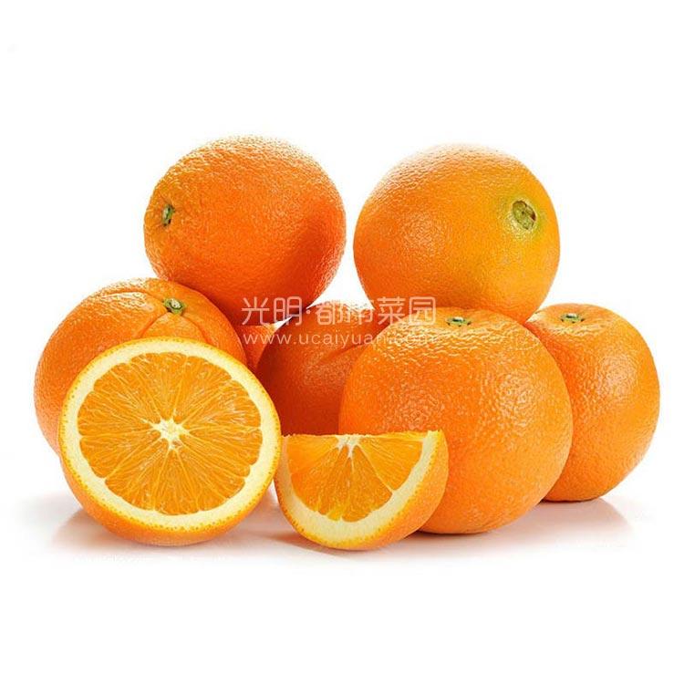 埃及脐橙3kg