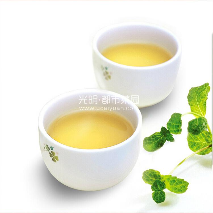 汪裕泰 一级金山时雨(绿茶)罐装100g